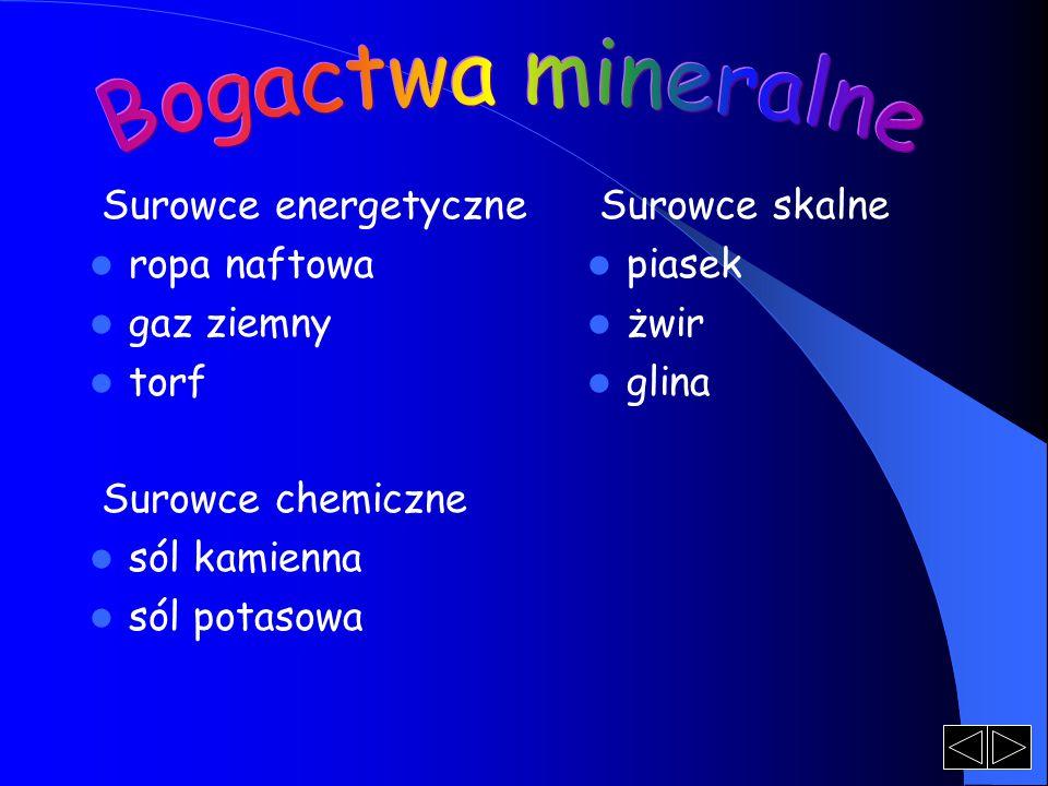 Bogactwa mineralne Surowce energetyczne ropa naftowa gaz ziemny torf