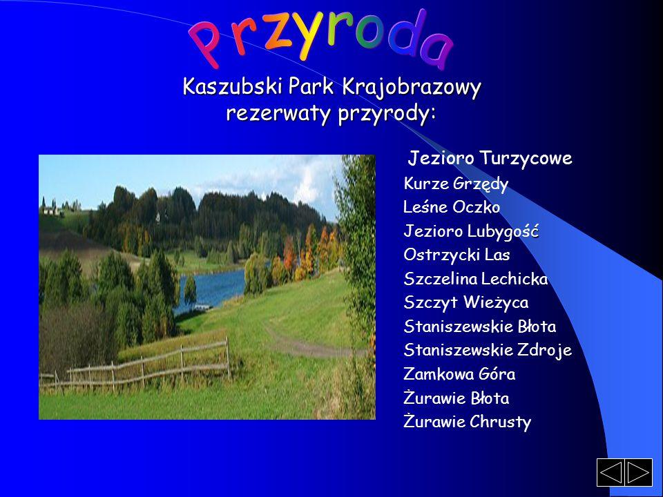 Kaszubski Park Krajobrazowy rezerwaty przyrody: