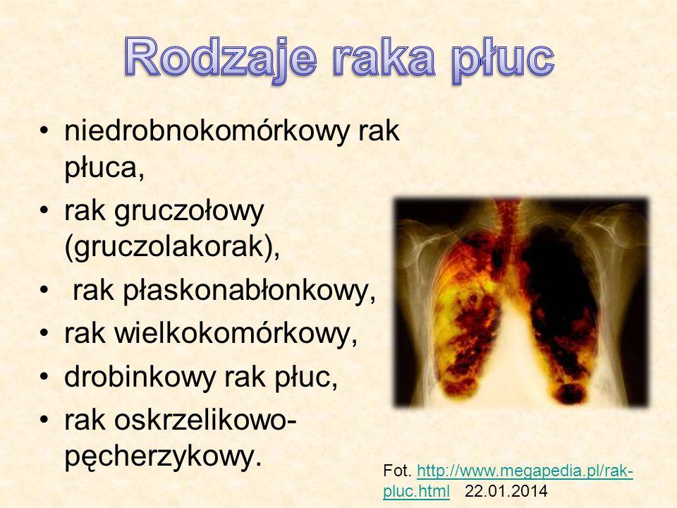 Rodzaje raka płuc niedrobnokomórkowy rak płuca,