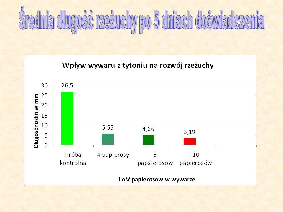 Średnia długość rzeżuchy po 5 dniach doświadczenia