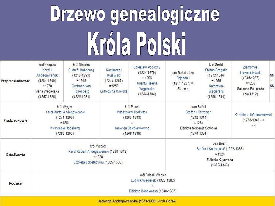 Drzewo genealogiczne Króla Polski