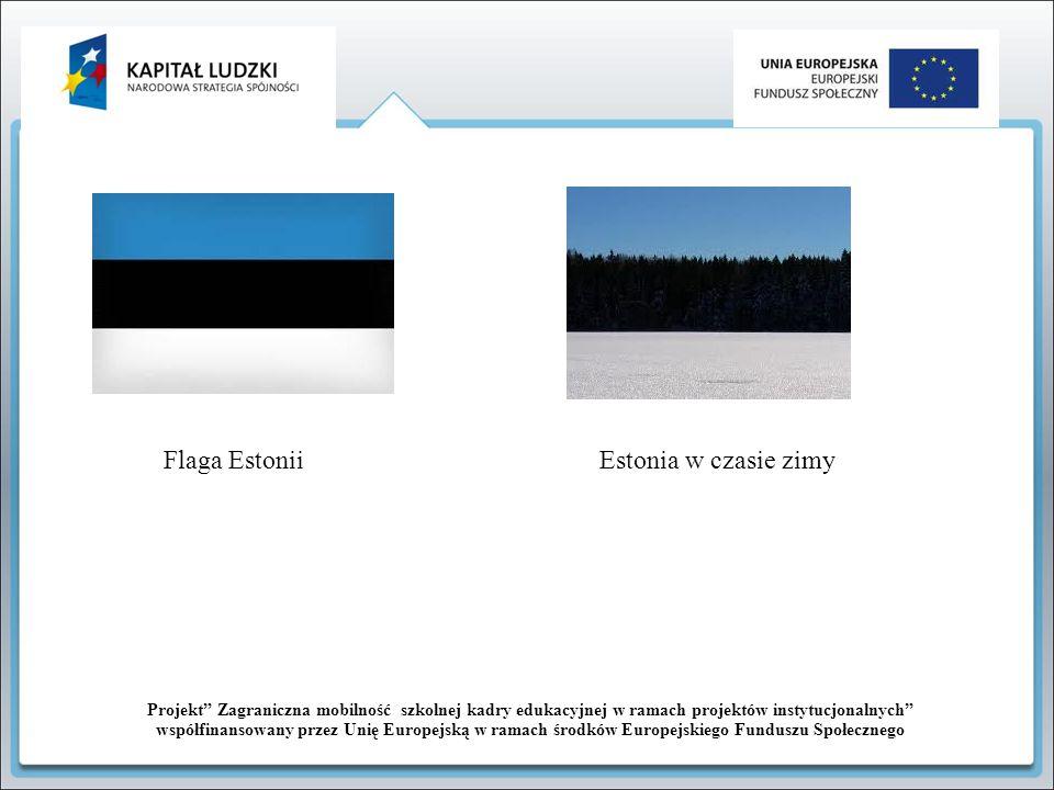 Flaga Estonii Estonia w czasie zimy