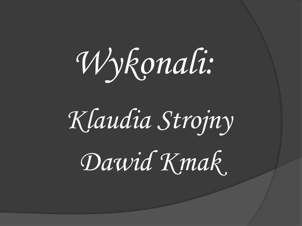 Wykonali: Klaudia Strojny Dawid Kmak