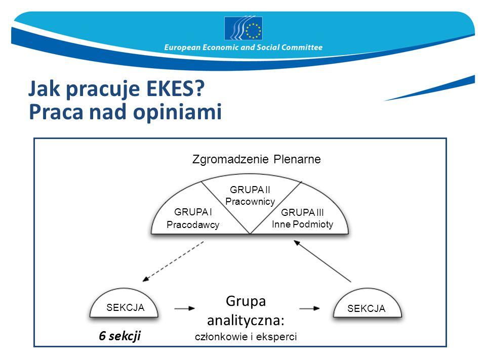 Praca nad opiniami Grupa analityczna: 6 sekcji Zgromadzenie Plenarne