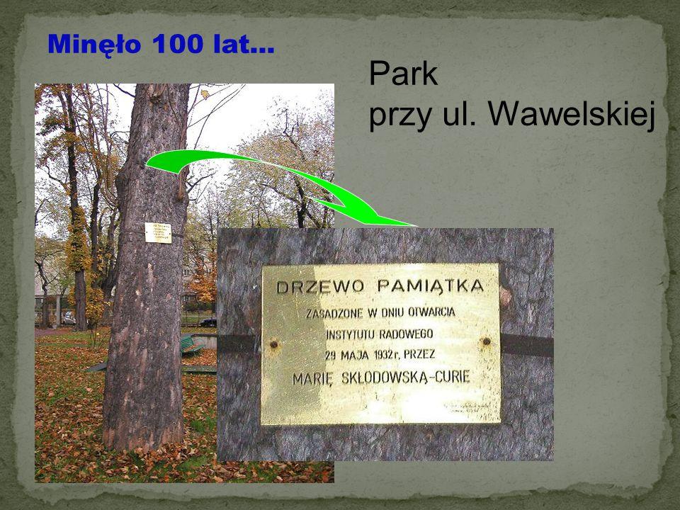 Minęło 100 lat... Park przy ul. Wawelskiej