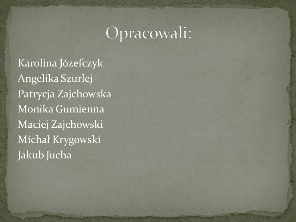 Opracowali: Karolina Józefczyk Angelika Szurlej Patrycja Zajchowska Monika Gumienna Maciej Zajchowski Michał Krygowski Jakub Jucha