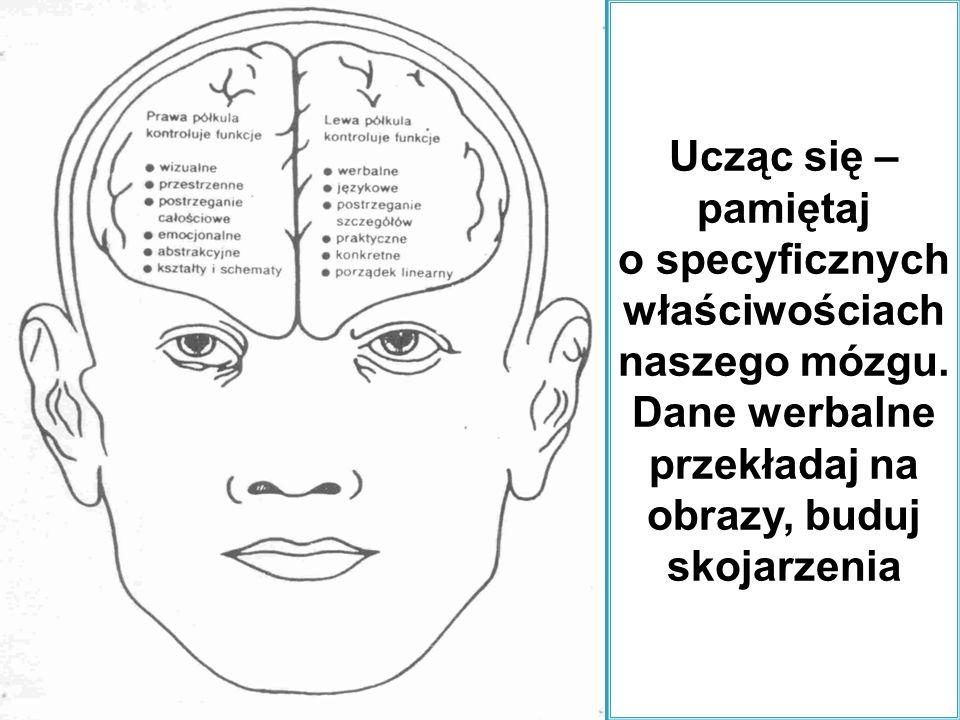 Ucząc się – pamiętaj o specyficznych właściwościach naszego mózgu