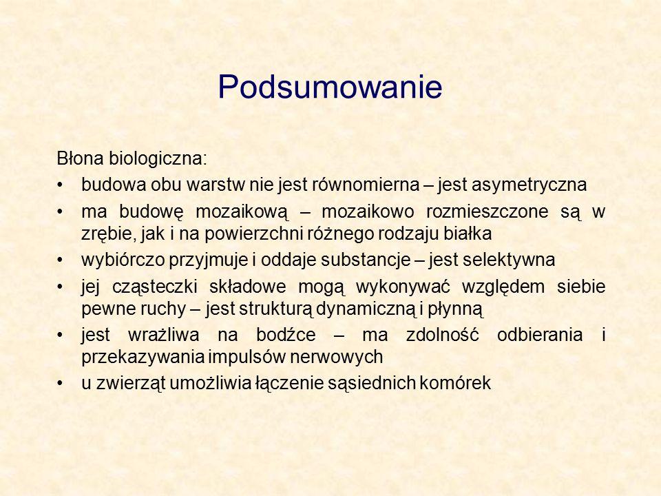 Podsumowanie Błona biologiczna: