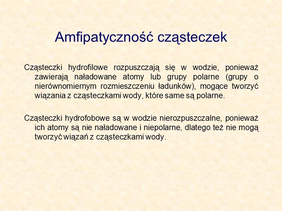 Amfipatyczność cząsteczek