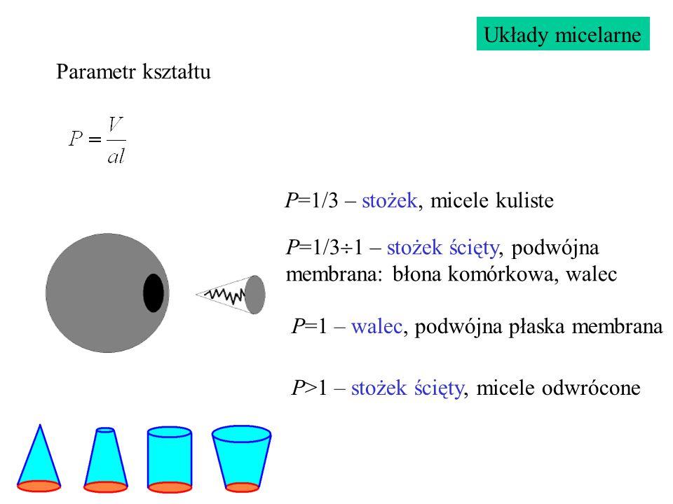Układy micelarne Parametr kształtu. P=1/3 – stożek, micele kuliste. P=1/31 – stożek ścięty, podwójna membrana: błona komórkowa, walec.