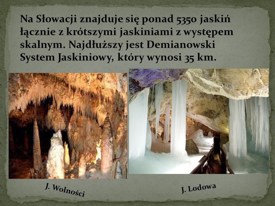 Na Słowacji znajduje się ponad 5350 jaskiń łącznie z krótszymi jaskiniami z występem skalnym. Najdłuższy jest Demianowski System Jaskiniowy, który wynosi 35 km.
