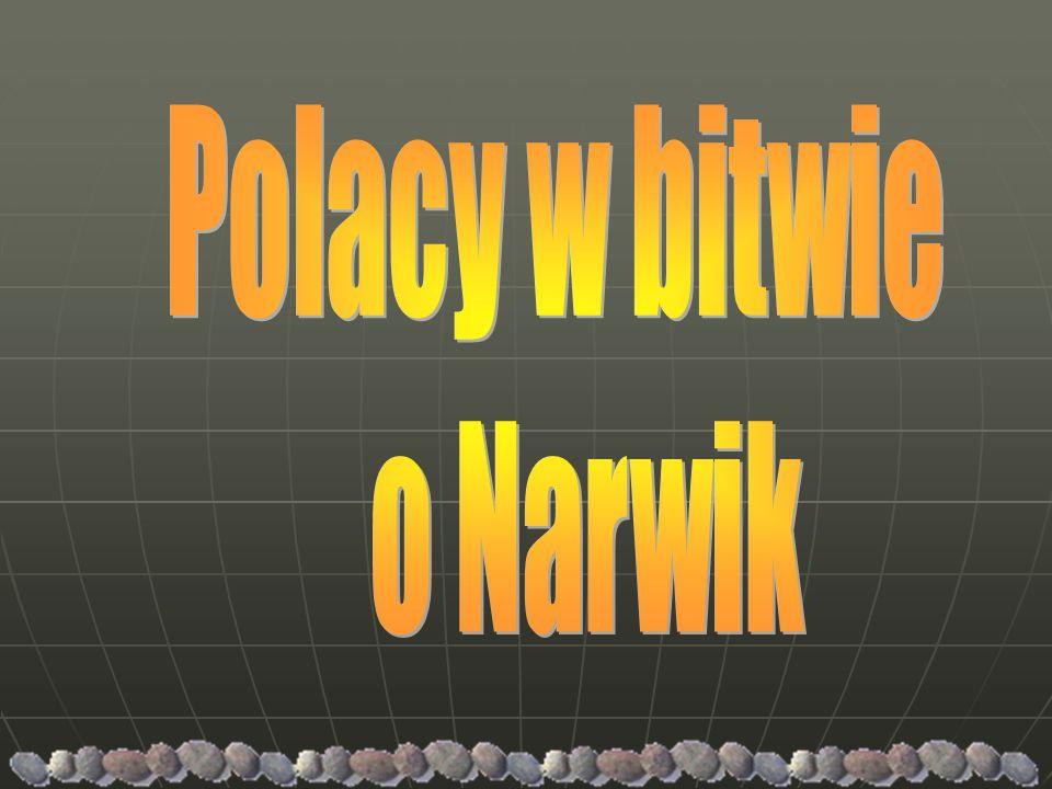 Polacy w bitwie o Narwik