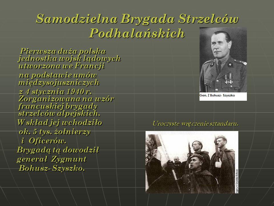Samodzielna Brygada Strzelców Podhalańskich