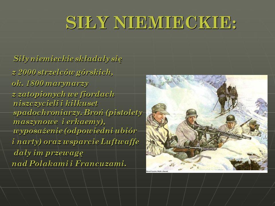 SIŁY NIEMIECKIE: Siły niemieckie składały się