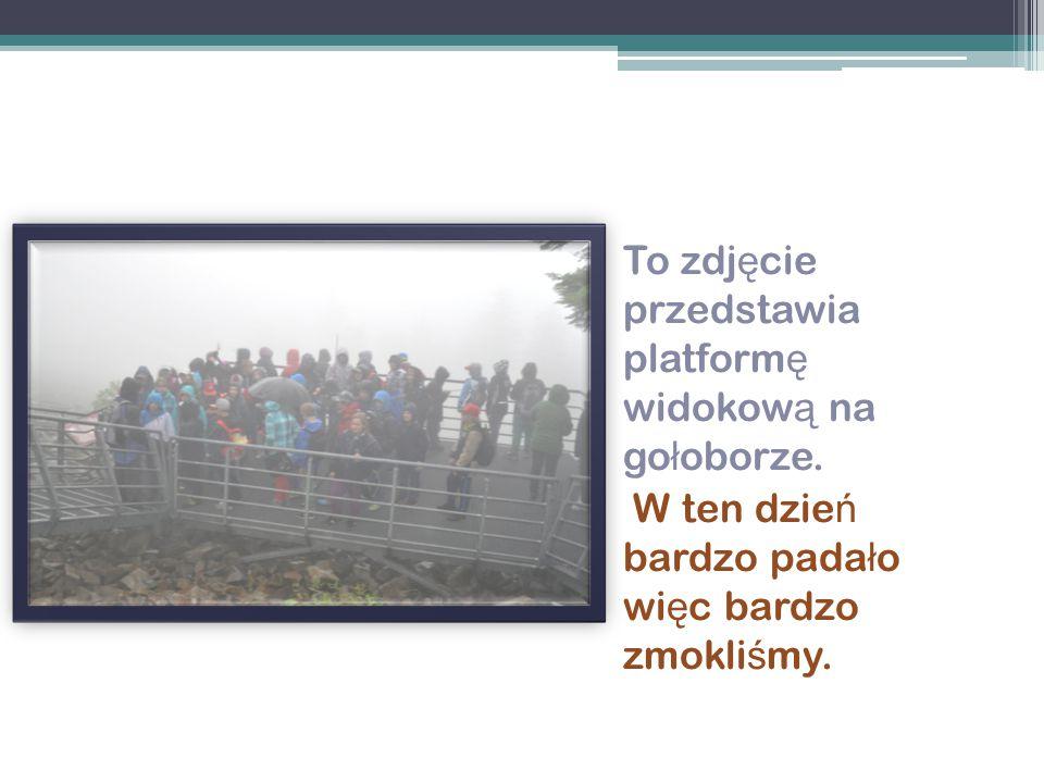 To zdjęcie przedstawia platformę widokową na gołoborze.
