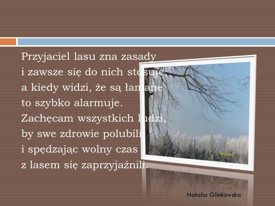 Przyjaciel lasu zna zasady i zawsze się do nich stosuje, a kiedy widzi, że są łamane to szybko alarmuje. Zachęcam wszystkich ludzi, by swe zdrowie polubili i spędzając wolny czas z lasem się zaprzyjaźnili.