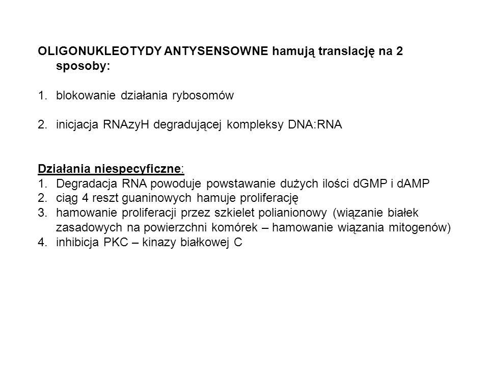 OLIGONUKLEOTYDY ANTYSENSOWNE hamują translację na 2 sposoby: