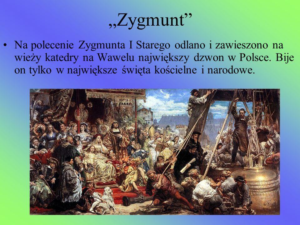 """""""Zygmunt"""