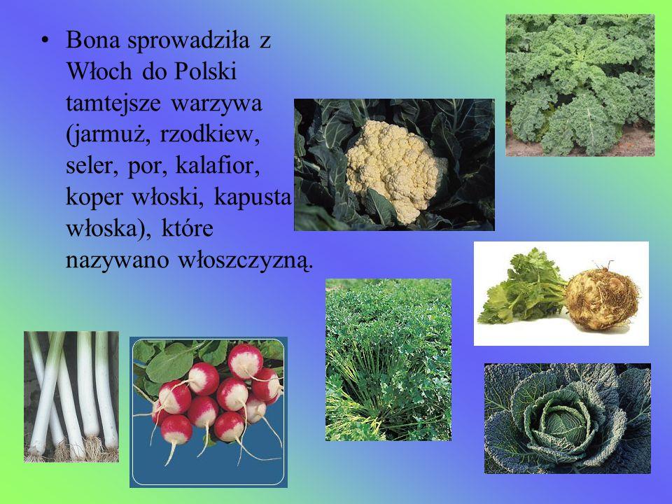 Bona sprowadziła z Włoch do Polski tamtejsze warzywa (jarmuż, rzodkiew, seler, por, kalafior, koper włoski, kapusta włoska), które nazywano włoszczyzną.