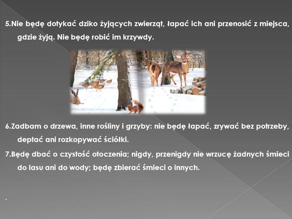 5.Nie będę dotykać dziko żyjących zwierząt, łapać ich ani przenosić z miejsca, gdzie żyją. Nie będę robić im krzywdy.