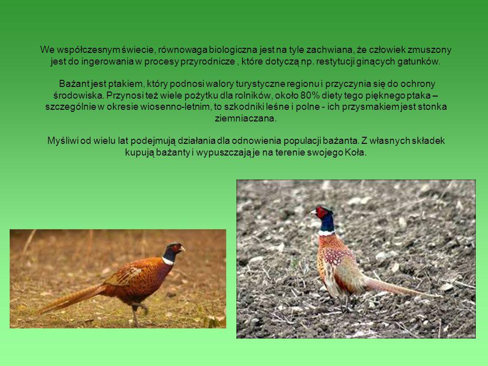 We współczesnym świecie, równowaga biologiczna jest na tyle zachwiana, że człowiek zmuszony jest do ingerowania w procesy przyrodnicze , które dotyczą np.