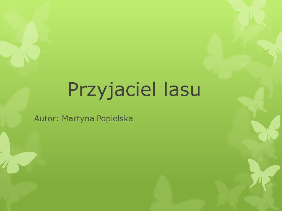 Autor: Martyna Popielska