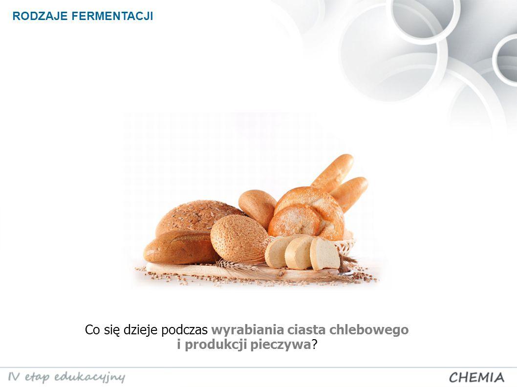 RODZAJE FERMENTACJI Co się dzieje podczas wyrabiania ciasta chlebowego i produkcji pieczywa