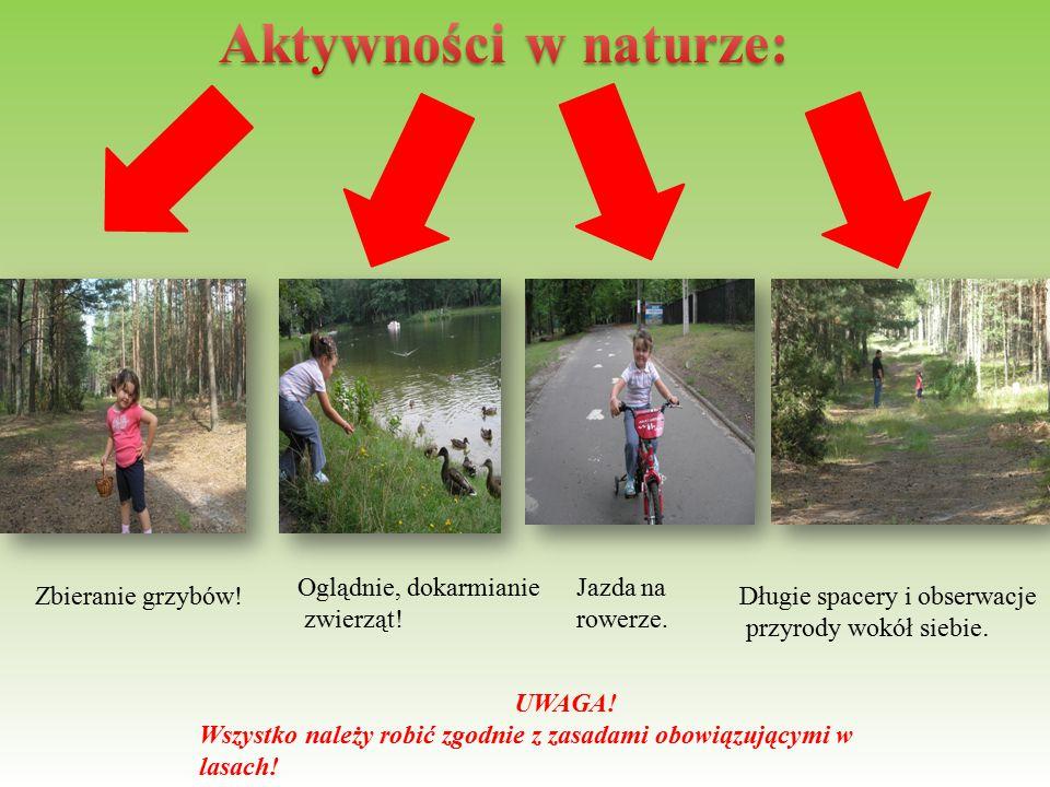 Aktywności w naturze: Oglądnie, dokarmianie zwierząt!