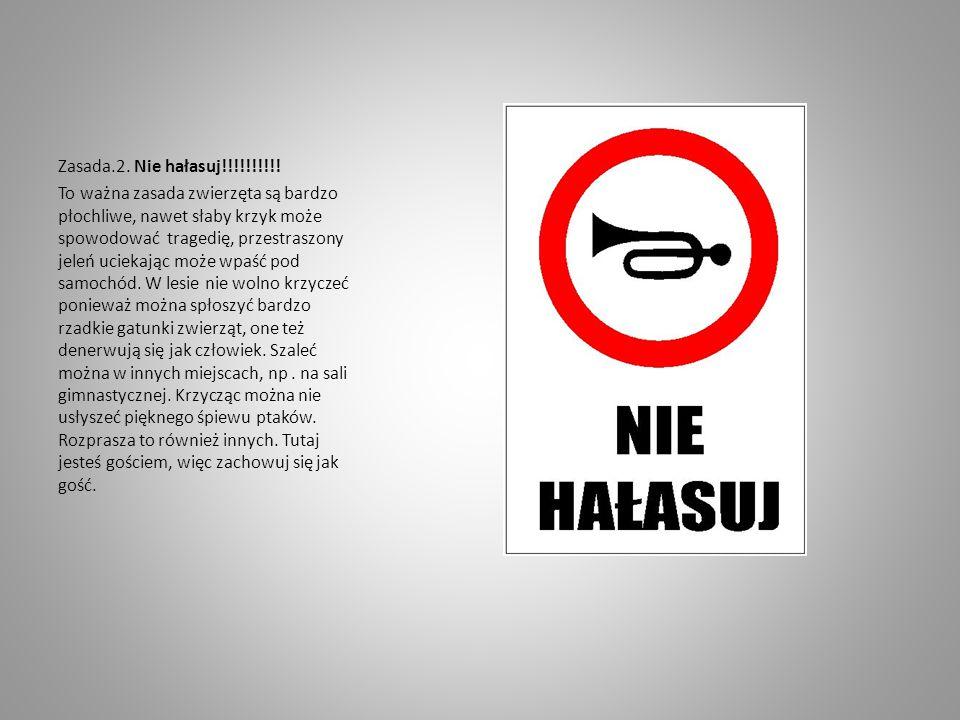 Zasada.2. Nie hałasuj!!!!!!!!!!