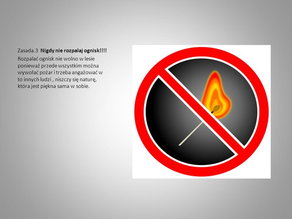 Zasada.3 Nigdy nie rozpalaj ognisk!!!!