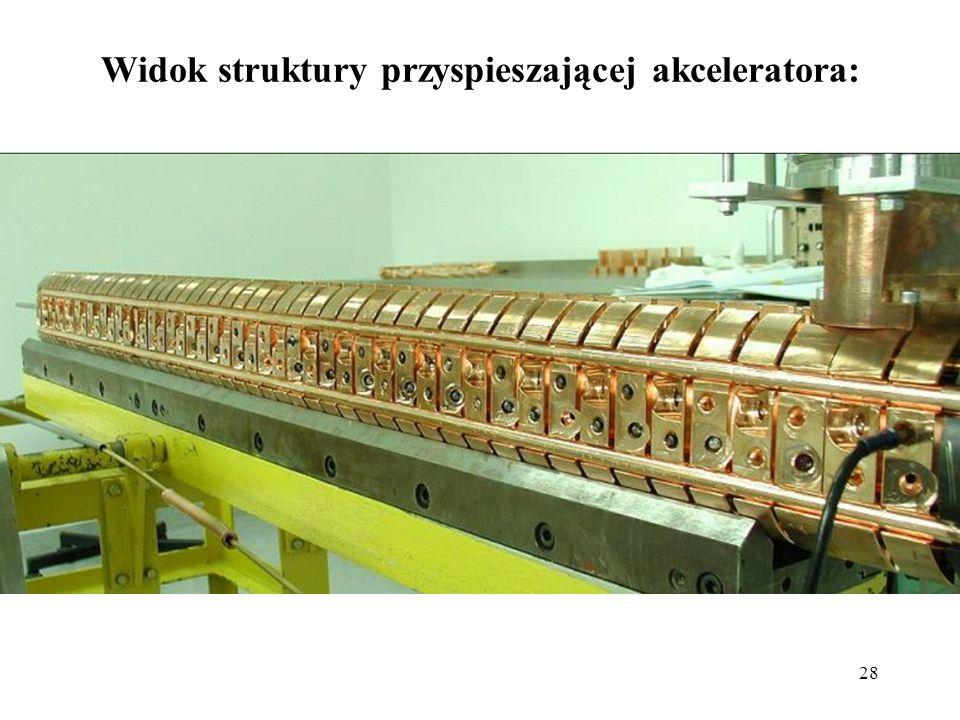 Widok struktury przyspieszającej akceleratora: