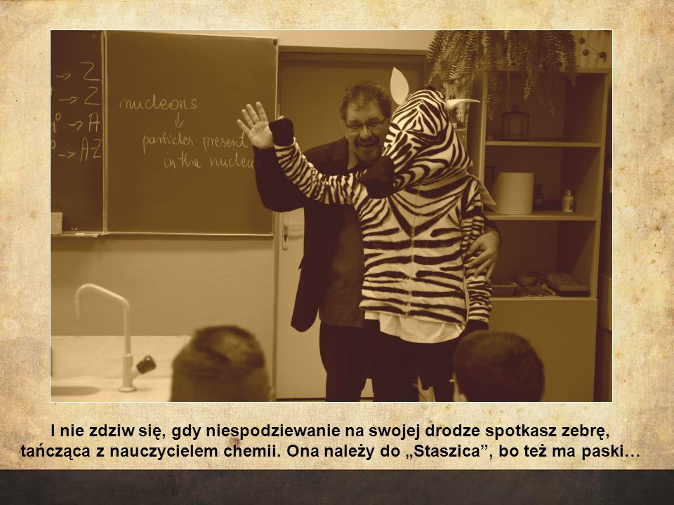 I nie zdziw się, gdy niespodziewanie na swojej drodze spotkasz zebrę, tańcząca z nauczycielem chemii.