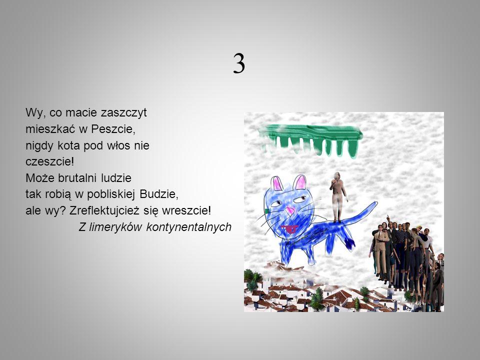 3 Wy, co macie zaszczyt mieszkać w Peszcie, nigdy kota pod włos nie