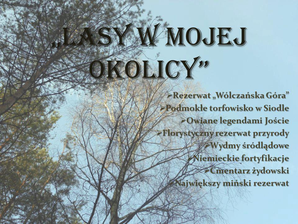"""""""Lasy w mojej okolicy Rezerwat """"Wólczańska Góra"""