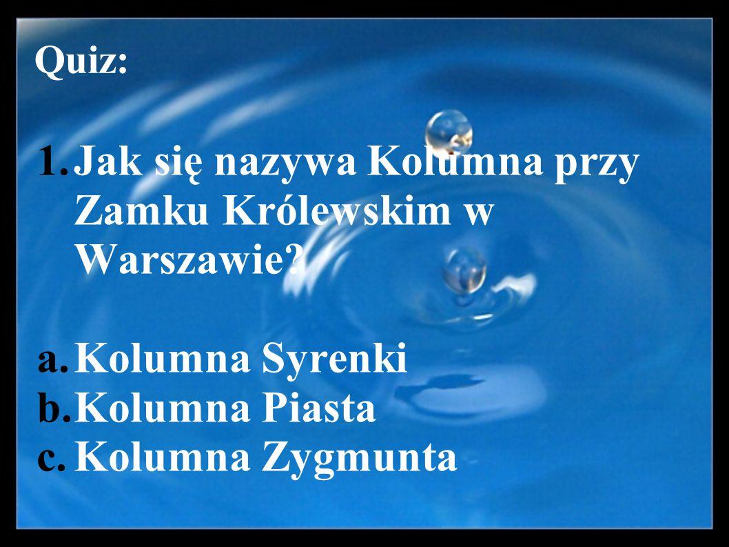 Jak się nazywa Kolumna przy Zamku Królewskim w Warszawie