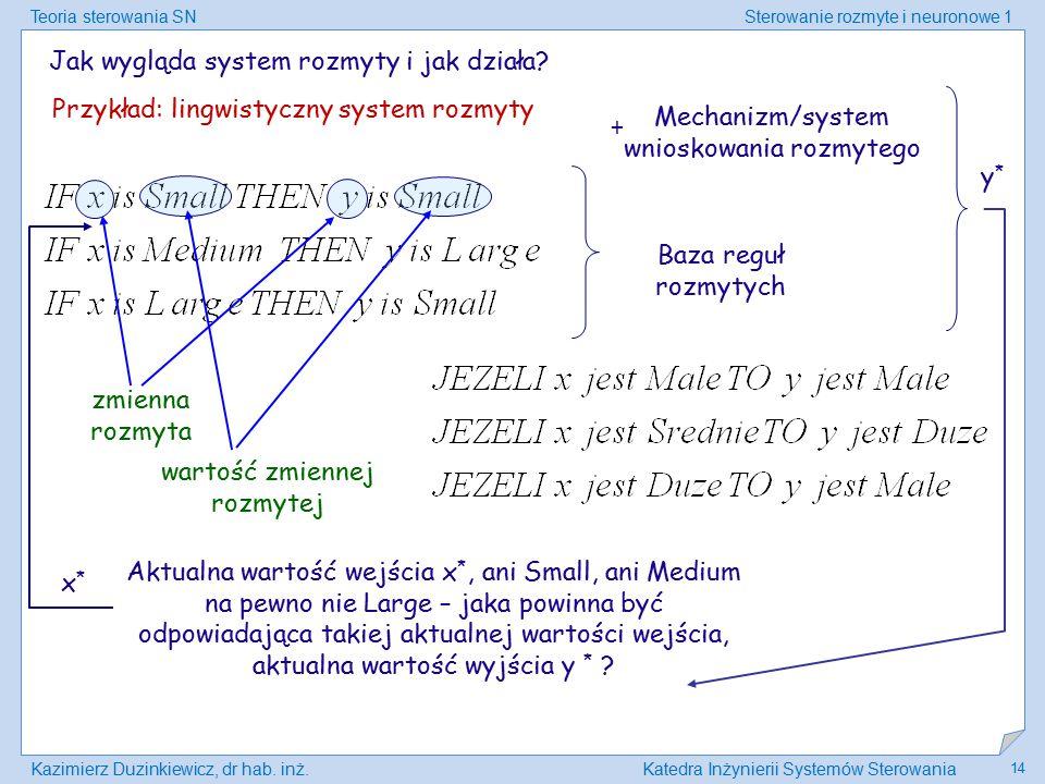 Jak wygląda system rozmyty i jak działa