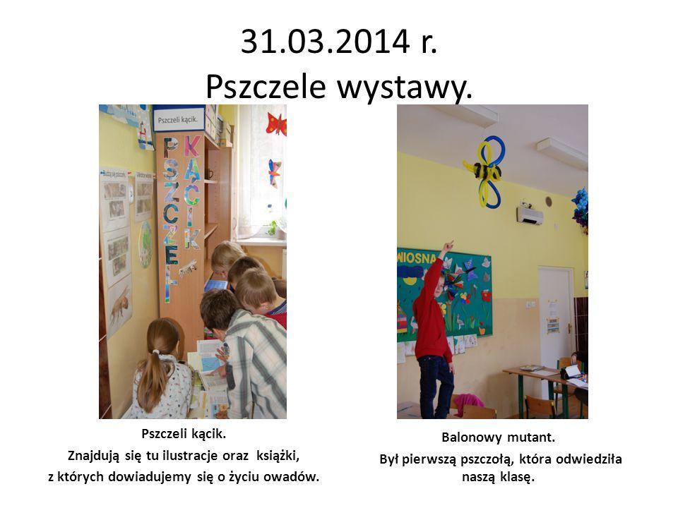 31.03.2014 r. Pszczele wystawy. Pszczeli kącik. Balonowy mutant.