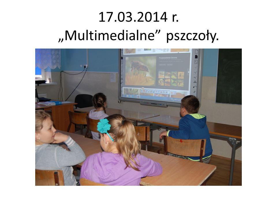 """17.03.2014 r. """"Multimedialne pszczoły."""