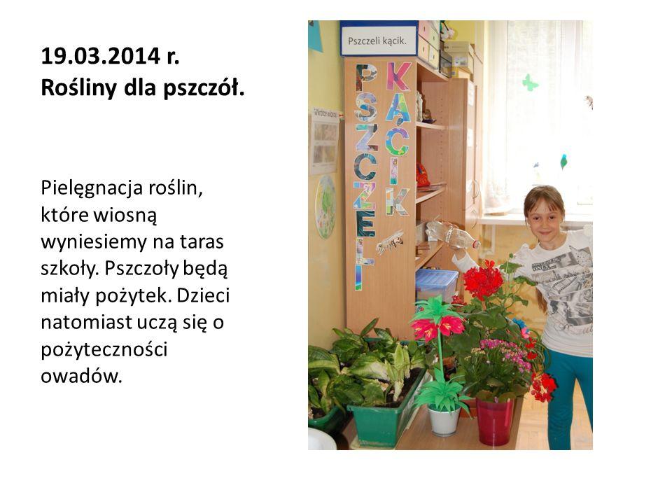 19.03.2014 r. Rośliny dla pszczół.
