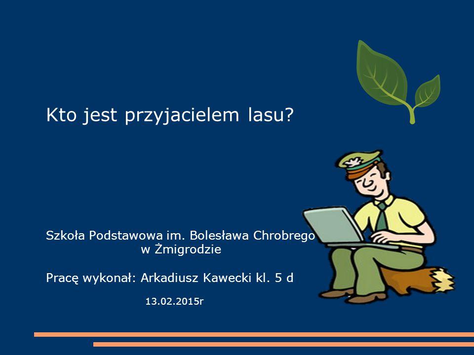 Kto jest przyjacielem lasu. Szkoła Podstawowa im. Bolesława Chrobrego