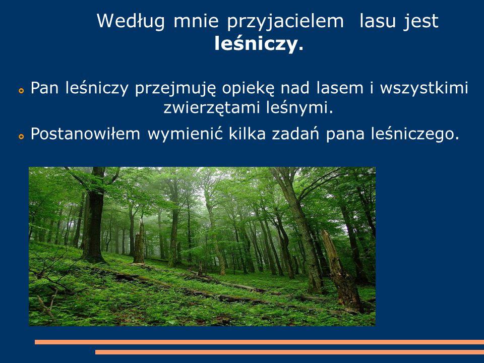 Według mnie przyjacielem lasu jest leśniczy.