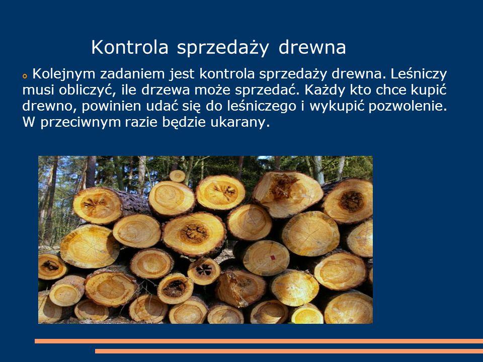 Kontrola sprzedaży drewna