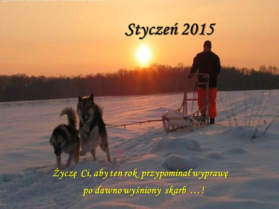 Życzę Ci, aby ten rok przypominał wyprawę po dawno wyśniony skarb …!