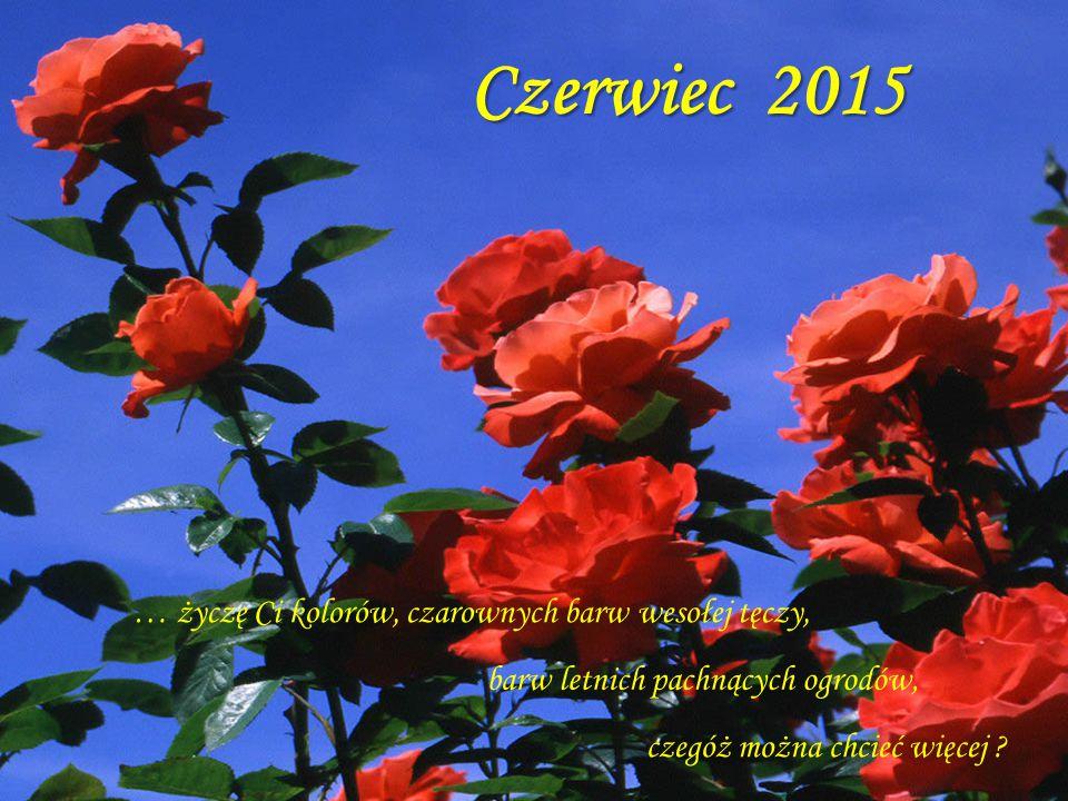 Czerwiec 2015 … życzę Ci kolorów, czarownych barw wesołej tęczy,