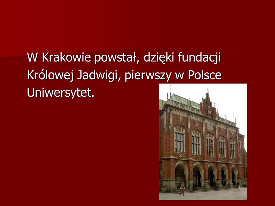 W Krakowie powstał, dzięki fundacji