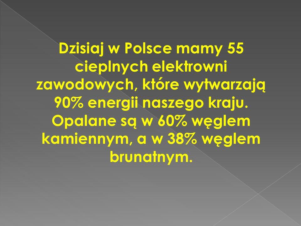 Dzisiaj w Polsce mamy 55 cieplnych elektrowni zawodowych, które wytwarzają 90% energii naszego kraju.