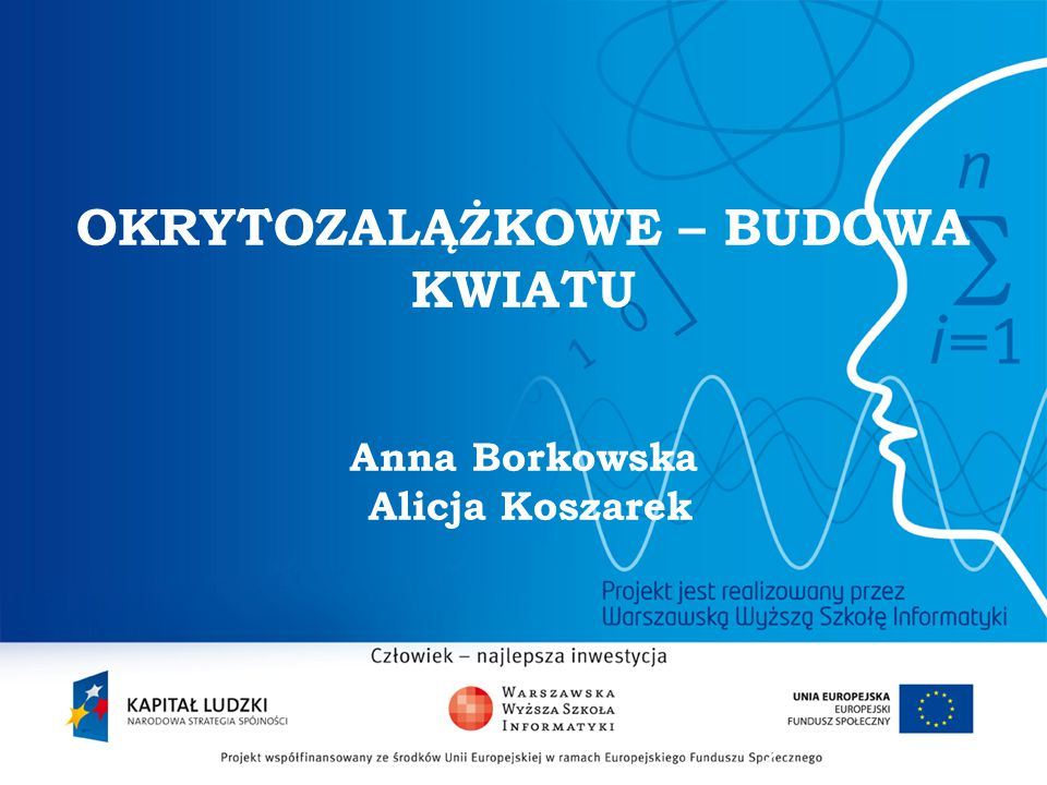 OKRYTOZALĄŻKOWE – BUDOWA KWIATU Anna Borkowska Alicja Koszarek