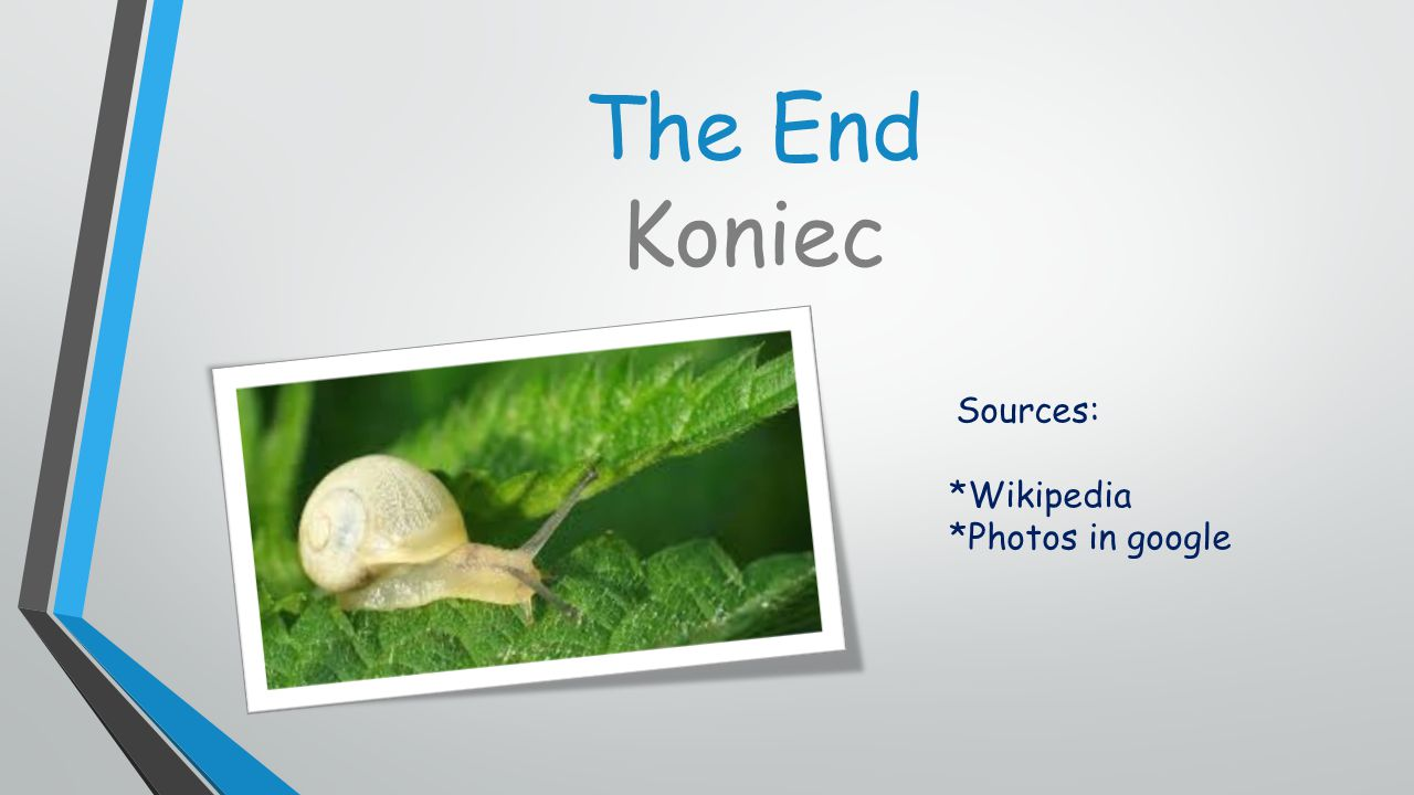 The End Koniec Sources: *Wikipedia *Photos in google