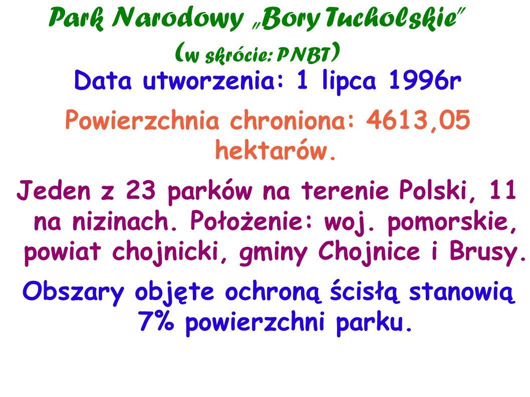 """Park Narodowy """"Bory Tucholskie (w skrócie: PNBT)"""