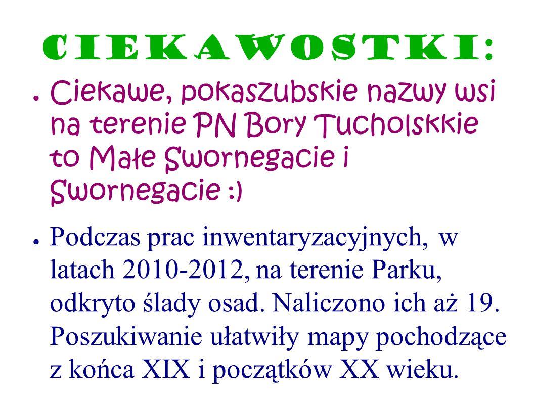 Ciekawostki: Ciekawe, pokaszubskie nazwy wsi na terenie PN Bory Tucholskkie to Małe Swornegacie i Swornegacie :)